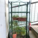 greenhouse160107_01